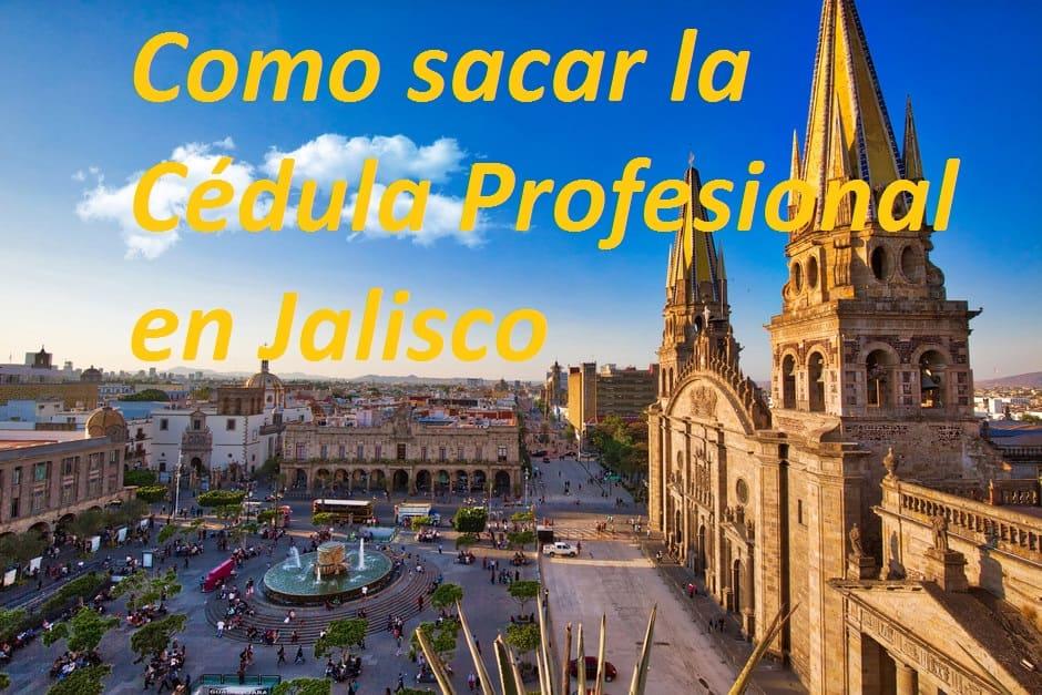 Guadalajara cedula profesional